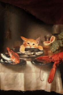 Jonas Loose, Cat Dinner (Germany, Europe)