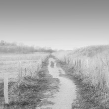 Dennis Wehrmann, The path to nowhere... (Germany, Europe)