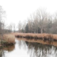 Dennis Wehrmann, River Landscape (Germany, Europe)