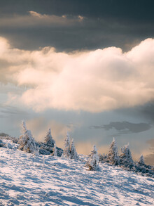 Sebastian 'zeppaio' Scheichl, Fresh snow in the mountains (Austria, Europe)