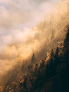 Sebastian 'zeppaio' Scheichl, Golden fog (Austria, Europe)