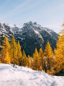 Sebastian 'zeppaio' Scheichl, White and yellow (Austria, Europe)