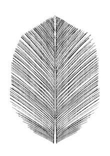 Dan Hobday, Feather (Großbritannien, Europa)