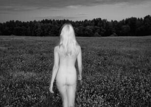 Linas Vaitonis, Wild Tales (Lithuania, Europe)
