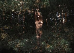 Linas Vaitonis, Wild Wild Woods (Lithuania, Europe)