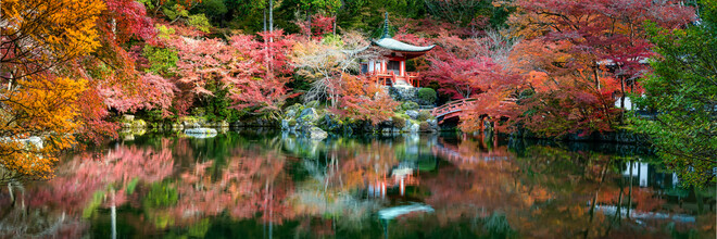 Jan Becke, Daigo ji Tempel in Kyoto (Japan, Asien)