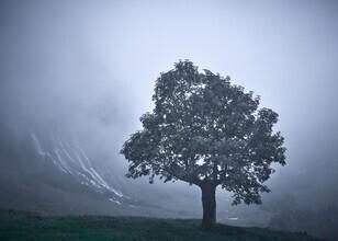 Alex Wesche, Einsamkeit (Schweiz, Europa)