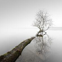 Ronny Behnert, The Wind Stands Silent (Deutschland, Europa)