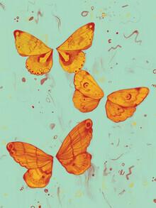 The Artcircle, Schmetterlingseffekt von Justyna Caputa (Polen, Europa)