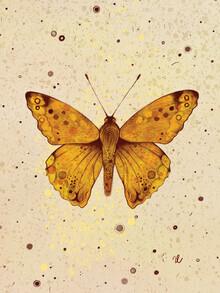 The Artcircle, Schmetterling von Justyna Caputa (Polen, Europa)
