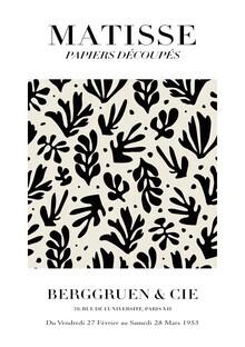 Art Classics, Matisse - Papiers Découpés (Germany, Europe)