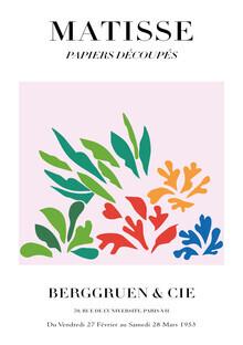 Art Classics, Matisse - Papiers Découpés, colorful botanical design (Germany, Europe)