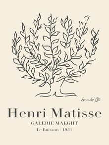 Art Classics, Matisse - Le Buisson (Germany, Europe)
