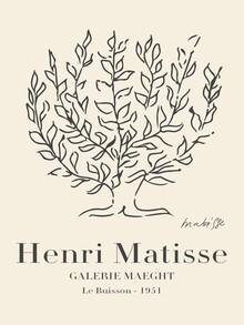 Art Classics, Matisse - Le Buisson (Deutschland, Europa)
