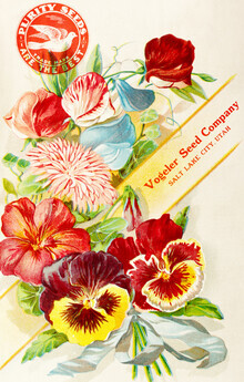 Vintage Nature Graphics, Purity seeds Are The Best (Germany, Europe)