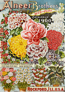 Vintage Nature Graphics, Alneer Brothers Seed And Plant (Germany, Europe)