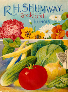 Vintage Nature Graphics, R.H. Shumway, Rockford, Illimois (Germany, Europe)