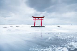Jan Becke, Red torii gate in winter (Japan, Asia)