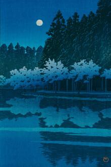Japanese Vintage Art, Winter Moon, Toyamagahara by Hasui Kawase (Japan, Asien)