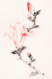 Japanese Vintage Art, Large Pink Blossom on a Stem by Katsushika Hokusai (Japan, Asia)