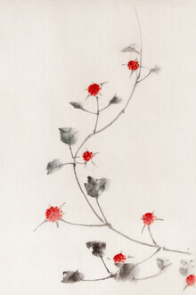 Japanese Vintage Art, Small Red Blossoms on a Vine by Katsushika Hokusai (Japan, Asia)