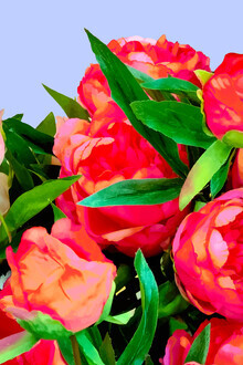 Uma Gokhale, I'd Rather Wear Flowers Than Diamonds (India, Asia)