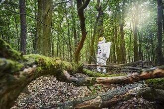 Sophia Hauk, Der Protestonaut im Wald (Deutschland, Europa)