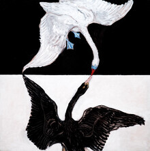 Art Classics, Hilma af Klint – The Swan No. 1 (Germany, Europe)