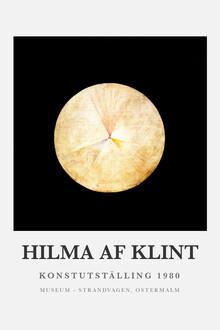 Hilma af Klint Konstutställing 3 - Fineart photography by Art Classics