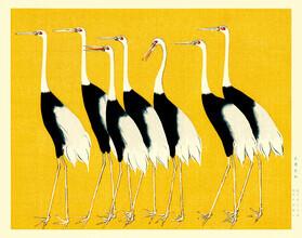 Japanese Vintage Art, Red crown cranes by Ogata Korin (Japan, Asia)