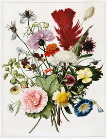 Vintage Nature Graphics, Bouquet of Flowers (Germany, Europe)
