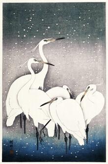Japanese Vintage Art, Group of Egrets by Ohara Koson (Japan, Asia)