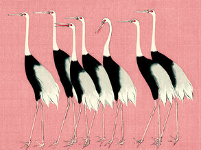Japanese Vintage Art, Red crown cranes in front of pink background by Ogata Korin (Japan, Asia)