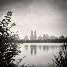 Alexander Voss, New York City - Central Park (Vereinigte Staaten, Nordamerika)