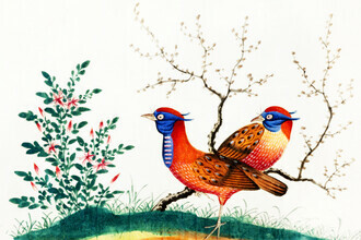 Vintage Nature Graphics, Chinese painting featuring two pheasant-like birds with flowering plants (Germany, Europe)