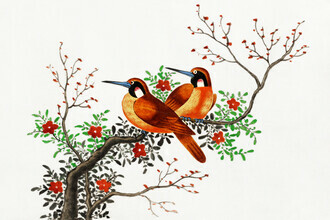 Vintage Nature Graphics, Chinese painting featuring two birds on a flowering tree branch (Germany, Europe)