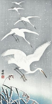 Japanese Vintage Art, Descending egrets in snow (Germany, Europe)