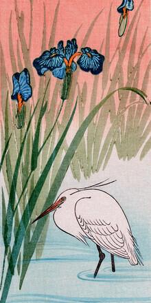 Japanese Vintage Art, Egret (Germany, Europe)