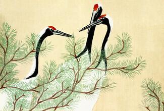 Japanese Vintage Art, Kraniche von Kamisaka Sekka (Deutschland, Europa)
