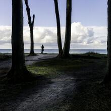 Franz Sussbauer, Hübscher Geist und Bäume (Deutschland, Europa)