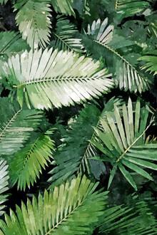 Uma Gokhale, Life Is Better With Palm Trees (India, Asia)
