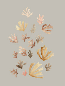Christina Wolff, Pastel Corals (Germany, Europe)