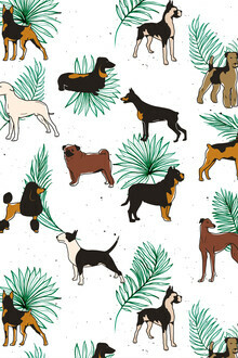Uma Gokhale, Miracles with paws, Tropical Cute Quirky Dog Pets Illustration, Whimsical Dachshund Pug Poodle Palm (India, Asia)