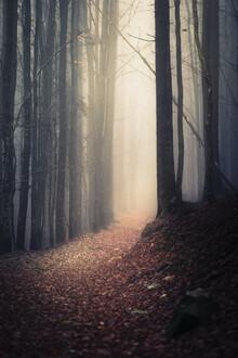Florian Eichinger, Mystik (Deutschland, Europa)