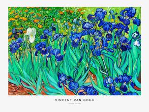 Art Classics, Vincent Van Gogh: Irises (France, Europe)