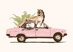 Florent Bodart, Tiger auf dem Autodach (Deutschland, Europa)